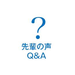先輩の声(Q&A)